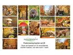 Herfst kaarten set, Autumn postcard set, Herbst Postkarten Set