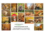 Herfst kaarten set, Autumn postcard set, Herbst Postkarten Set