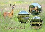 Postkarte-Leek-001