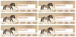 Postcard-ID-stickers-6x-Konik-pferd