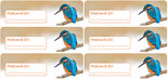 Postcard ID sticker - ijsvogel