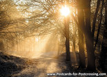 Ansichtkaart zonsondergang Dwingelderveld, postcard sunset Dwingelderveld, Postkarte Sonnenuntergang Dwingelderveld