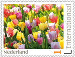 Postzegels voor Postcrossing Tulpenveld