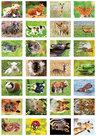 Dieren stickervel,  beloningsstickervel dieren, Tieraufkleber
