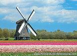 Postkarten kaufen online - Mühle Postkarten