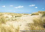 ansichtkaart duinen