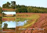 ansichtkaart Veluwe, postcard Veluwe, Postkarte Veluwe, Ansichtskarte