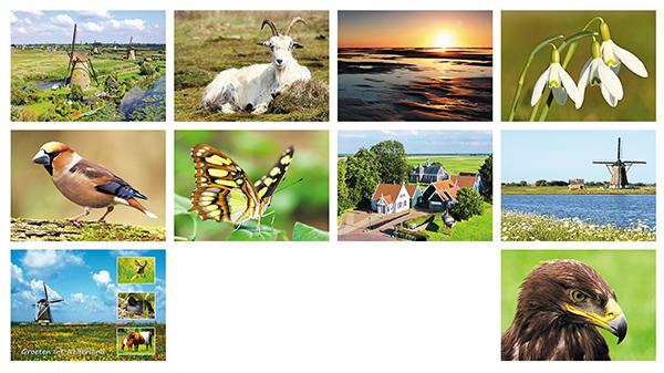 Postkartenset Niederlandischen