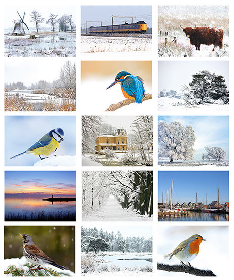 Postkartenset winter
