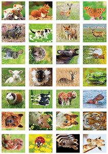 Dieren stickervel, Animal sticker sheet, Tieraufkleber