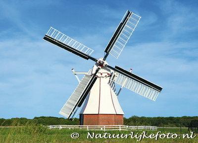 Die Weisse Mühle (0123)