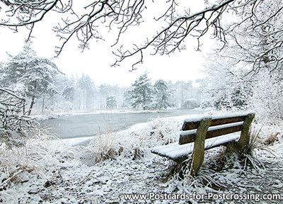 AnsichtkaartFreulevijver in winter - Wijnjewoude