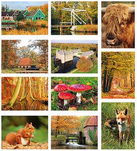herfst kaartenset - Postcard set autumn - Postkarten set Herbst