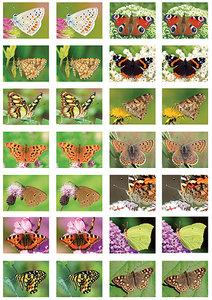 vlinders stickers - stickervellen met vlinders