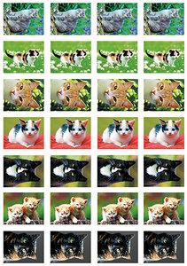 Katten stickers - stickervellen met katten