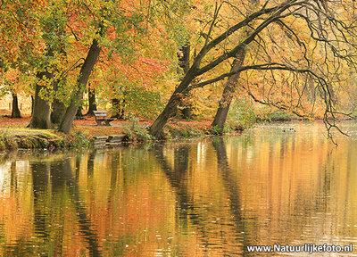 Ansichtkaart bankje in de herfst