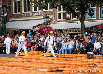 ansichtkaart Alkmaar - kaasmarkt