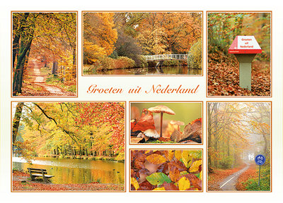 Ansichtkaart groeten uit Nederland herfst