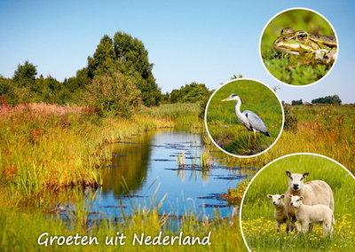 Postkarte Groeten uit Nederland 005