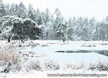 ansichtkaart winters landschap, winter landscape postcard , Postkarte Winterlandschaft