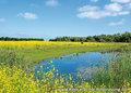 Landschaft Postkarten